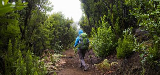 Wanderung auf La Palma - André Schumacher / laif - © André Schumacher