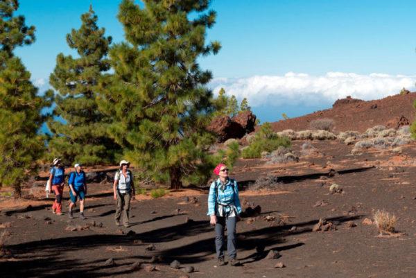 Wandern im Teide-Nationalpark - Klaus Hoffmann - © K. Hoffmann
