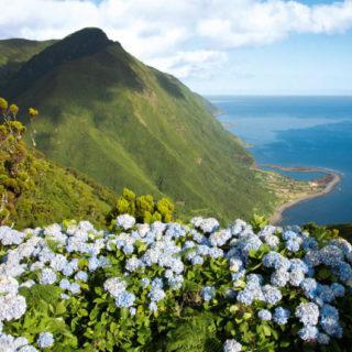 Fajã da Caldeira do Santo Cristo auf São Jorge - Rui Vieira / Associação Turismo dos Açores (ATA) - © R. Vieira / ATA