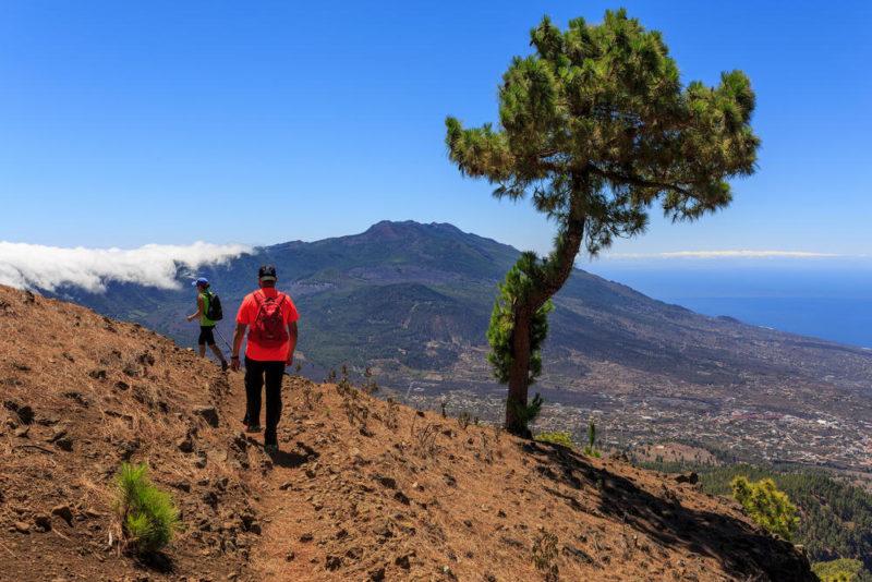 Wanderung zum Pico Bejenado - Visit La Palma - © Visit La Palma / Van Marty