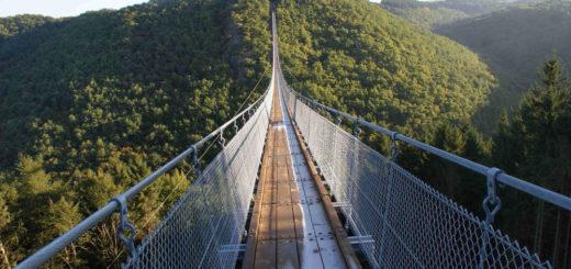 Hängeseilbrücke Geierlay - Ingo Börsch - © Pfaffen Engineering