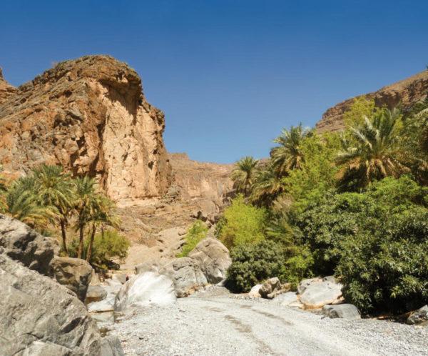 Wadi Nakhar - Ines Blumenstein