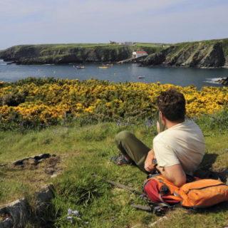 Blick auf die Küste am Pembrokeshire Coast Way - Darek Wylezol