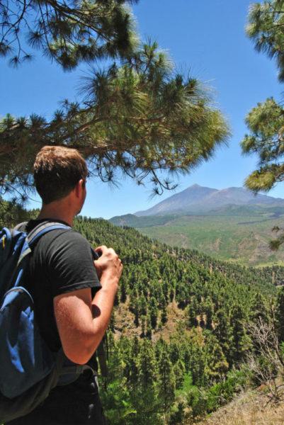 Blick auf den Teide - Melanie Rood