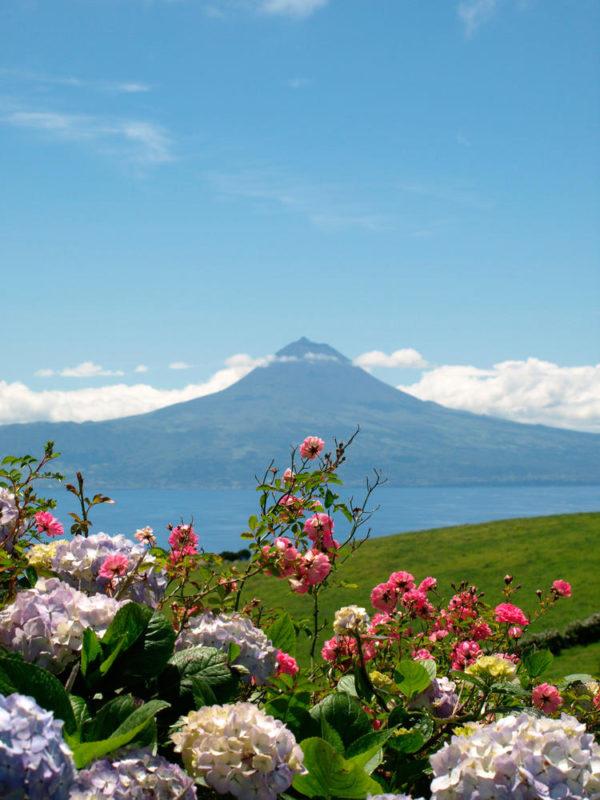 Pico-Blick von São Jorge aus - Sabine Conrad