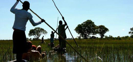 Günstige Botswana Gruppenreisen für 18 - 39 jährige 2019 ab € 734.0 | Erlebnisrundreisen.de