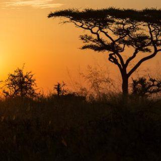 Günstige Kenia Gruppenreisen für 18 - 39 jährige 2019 ab € 3297.0 | Erlebnisrundreisen.de