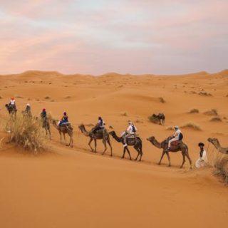 Günstige Marokko Gruppenreisen für 18 - 39 jährige 2019 ab € 479.0 | Erlebnisrundreisen.de