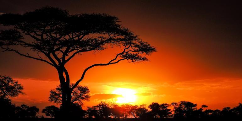 Günstige Kenia Gruppenreisen für 18 - 39 jährige 2019 ab € 1349.0 | Erlebnisrundreisen.de