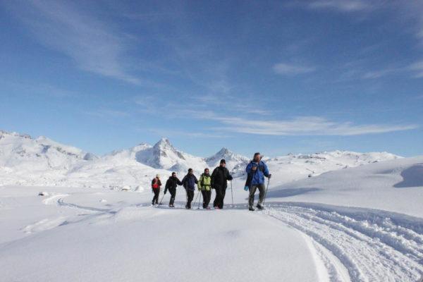 Schneeschuhwanderung - Robin Heal