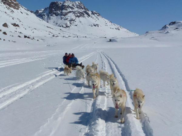 Hundeschlittentour Grönland - Anna Joswig
