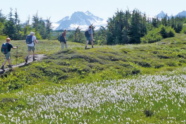 Alaska-Alaskas-Ruf-der-Wildnis-2