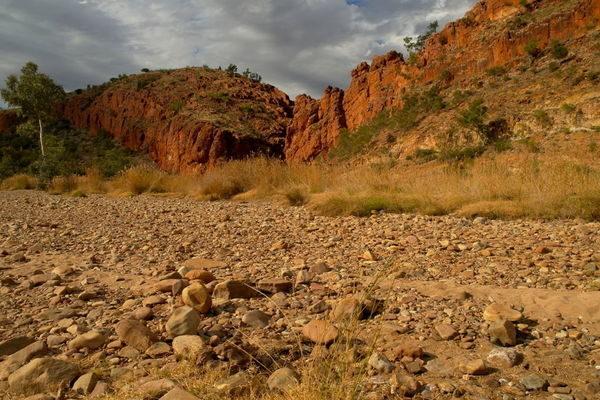 Australien-Wüstenabenteuer-Larapinta-Trail-2