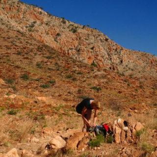 Wüstenabenteuer Larapinta Trail