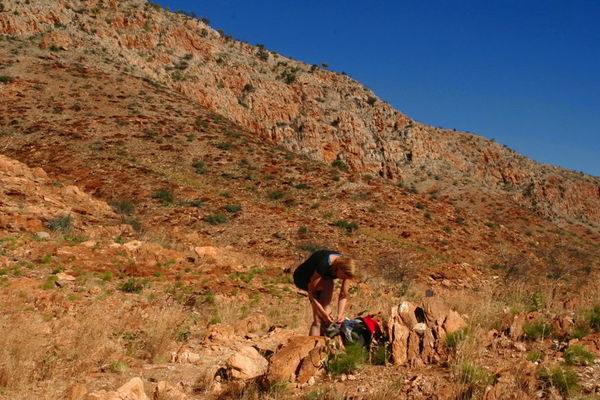 Australien-Wüstenabenteuer-Larapinta-Trail