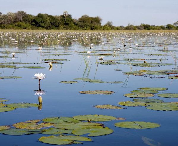 BW-Südafrika-Botswana-Simbabwe-Untouched-5