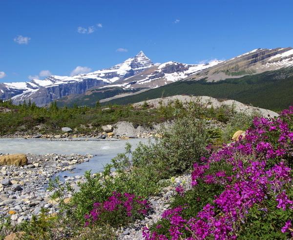 Rundreise Kanada - Lodge- & Ranchtour: Rocky Mountains bis Pazifik 2019