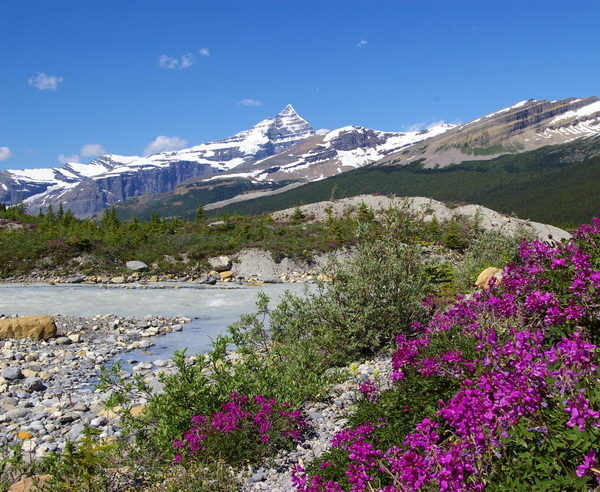 Mt. Robson in British Columbia