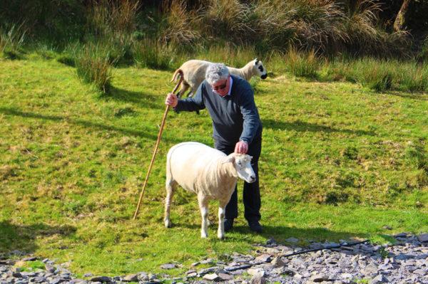 Dr.-Tigges-Studienreise-Irland-geruhsam-entdecken