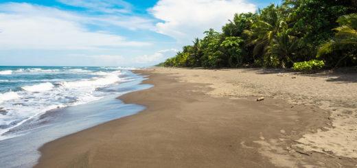 Kulinarische Erlebnisse in Costa Rica   Erlebnisrundreisen.de