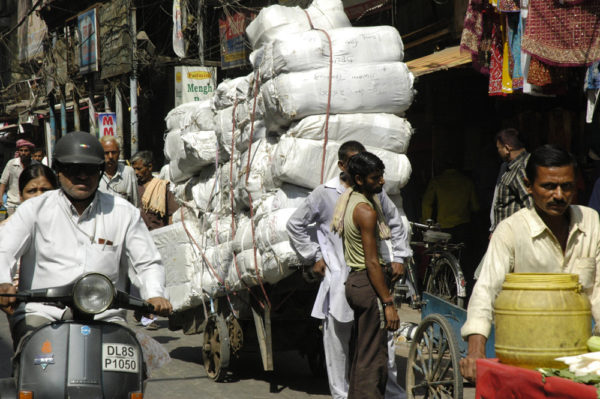 IN-Gujarat-Perle-Westindiens-6