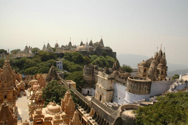 IN-Gujarat-Perle-Westindiens-8