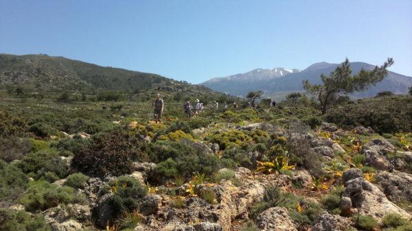 Wanderung bei Loutro im Süden Kretas - Stephan Kinkele