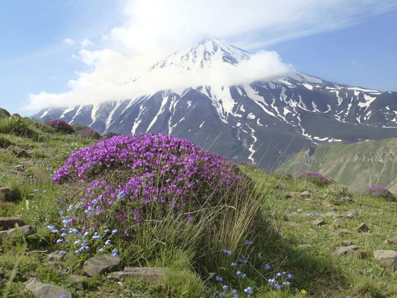 Gipfel Zardesar mit Blick auf Damavand - Behzad Marvie