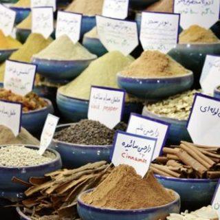 Iran deutschsprachig gefuehrte Studienreisen 2019
