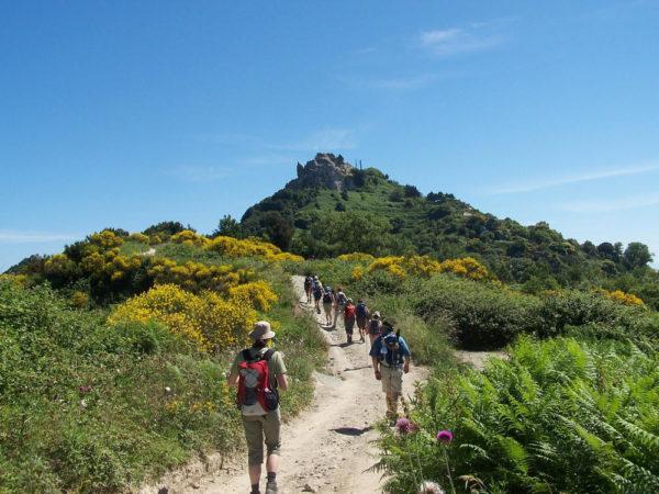 Wanderung am Monte Epomeo