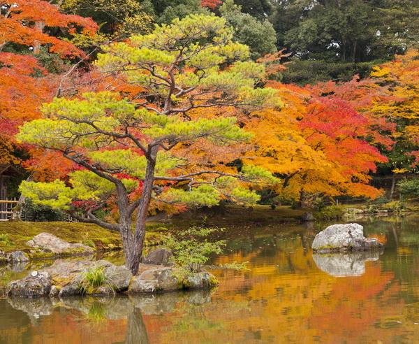 Rundreise Japan - Komfort auf Japanisch 2019