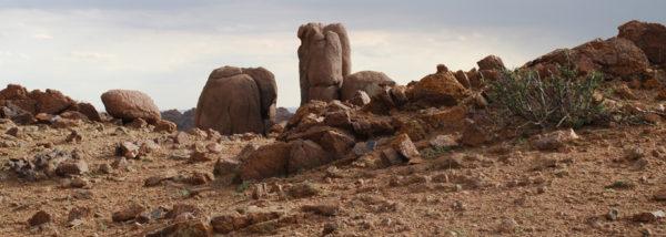MN-Jeep-Pferd-Kamel-Mongolei-erleben-5