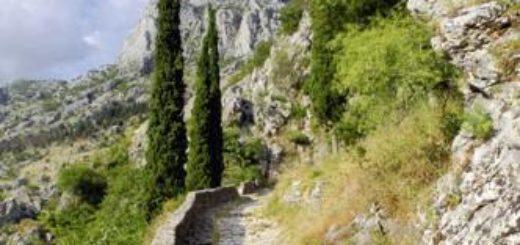 Montenegro – Albanien deutschsprachig gefuehrte Studienreisen 2019