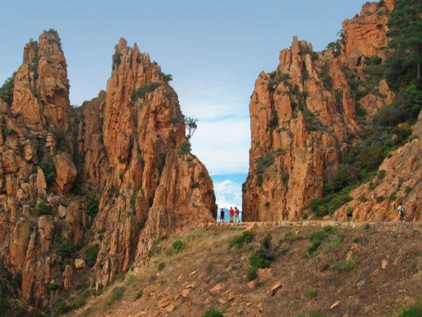 Zwischen den Felsen der Calanques - Karin Wünscher