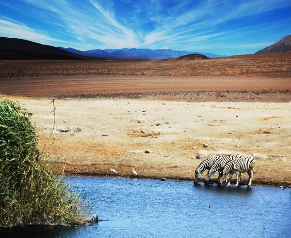 Rundreise Tansania - Wilder Süden 2019