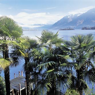 Tessin – Lago Maggiore deutschsprachig gefuehrte Studienreisen 2019
