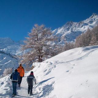 Winterwanderweg im Saastal. - PHOTOPRESS/Saas-Fee - ©PHOTOPRESS/Saas-Fee
