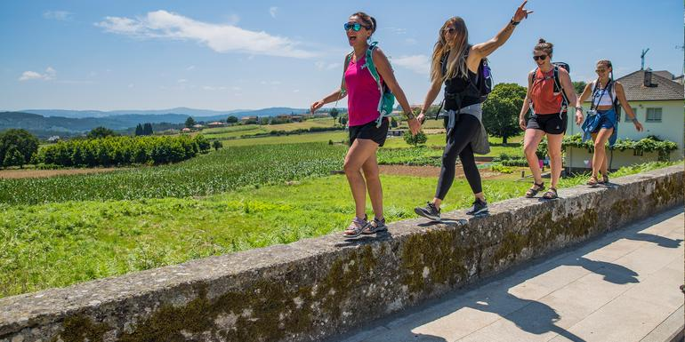 Walk the Camino de Santiago