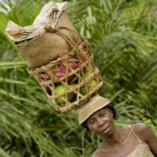 Madagaskar deutschsprachig gefuehrte Studienreisen 2019 /2020  | Tinta Tours Erlebnisreisen
