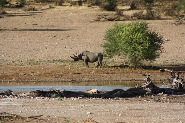Namibia-Wandern-im-vielseitigen-Herzen-Namibias-Discover-Namibia-2