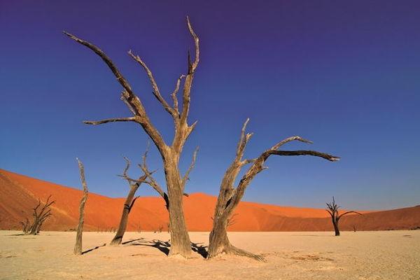 Wandern im vielseitigen Herzen Namibias (Discover Namibia)