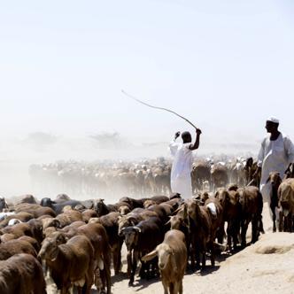 Nubien – Sudan deutschsprachig gefuehrte Studienreisen 2019 /2020  | Tinta Tours Erlebnisreisen