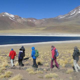 Wanderung an der Andenlagune Miscanti - Lena Schnabel