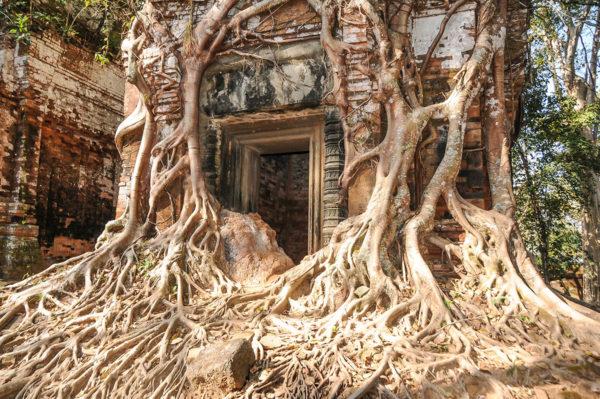 Vietnam und Kambodscha ─ Im Reich der Kaiser und Khmer Studienreise