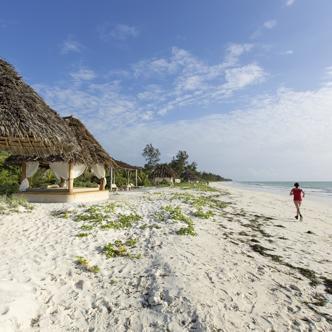 Tansania – Sansibar deutschsprachig gefuehrte Studienreisen 2019 /2020  | Tinta Tours Erlebnisreisen