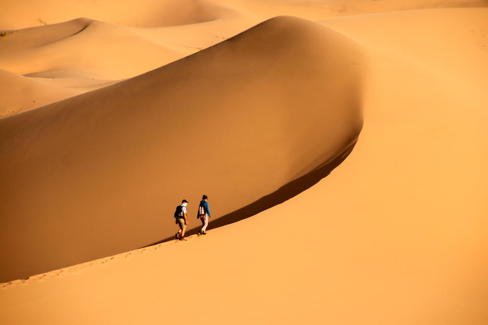 Wüstenwanderung bei Khongoriin Els - Rüdiger Schecke