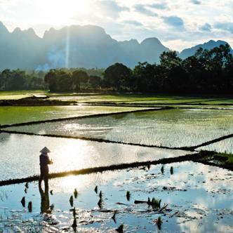 Vietnam deutschsprachig gefuehrte Gruppenreise 2019/2020 | Tinta Tours Erlebnisreisen