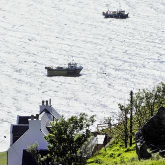 Schottland Die grünen Hügel der Lowlands und die Berge und Seen der Highlands erleben