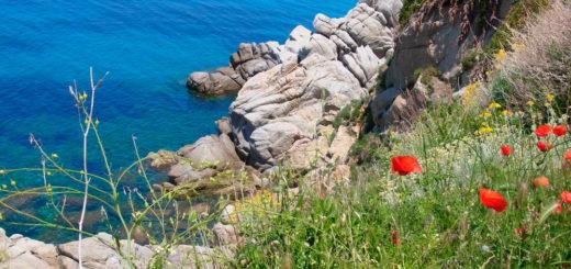 Küste bei Sant'Andrea - Jacqueline Christoph