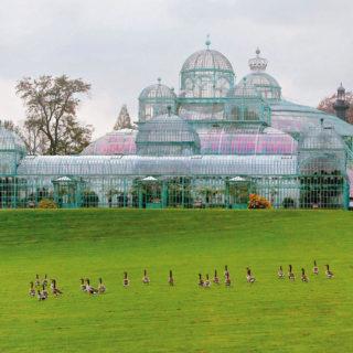 Gewächshaus im Königlichen Garten von Laken - Visit Brussels - © Visit Brussels